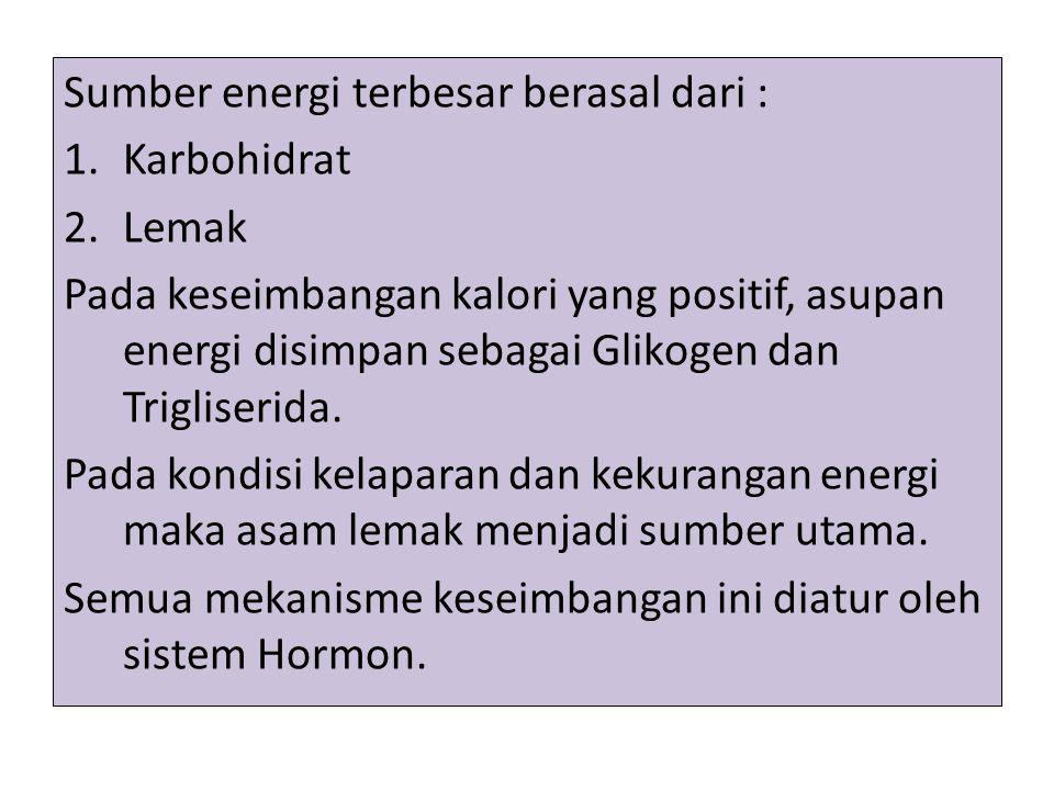 Sumber energi terbesar berasal dari :
