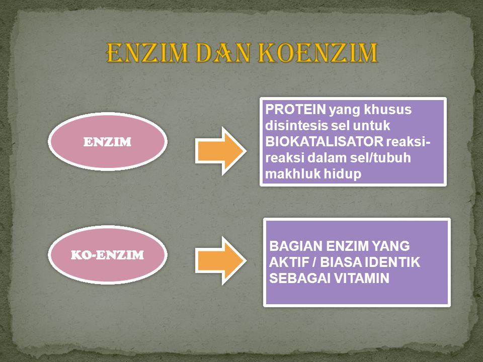 ENZIM DAN KOENZIM PROTEIN yang khusus disintesis sel untuk BIOKATALISATOR reaksi-reaksi dalam sel/tubuh makhluk hidup.