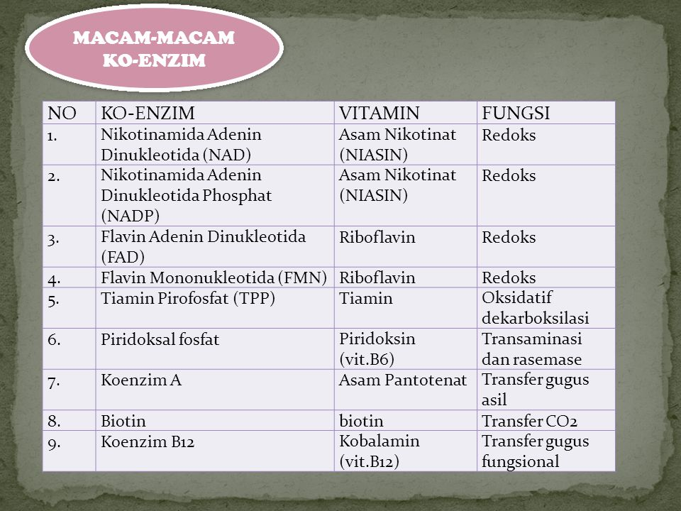 MACAM-MACAM KO-ENZIM NO KO-ENZIM VITAMIN FUNGSI 1.