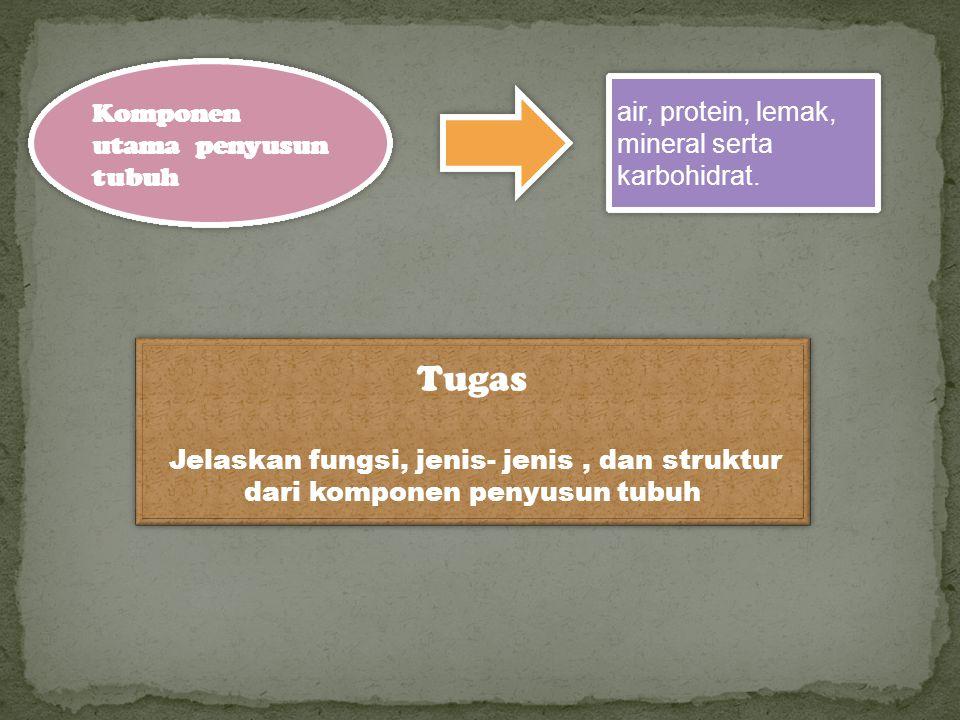 Tugas Komponen utama penyusun tubuh