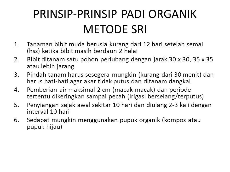 PRINSIP-PRINSIP PADI ORGANIK METODE SRI