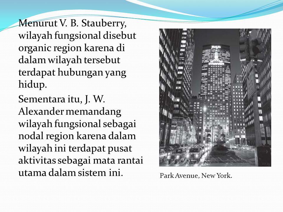 Menurut V. B. Stauberry, wilayah fungsional disebut organic region karena di dalam wilayah tersebut terdapat hubungan yang hidup. Sementara itu, J. W. Alexander memandang wilayah fungsional sebagai nodal region karena dalam wilayah ini terdapat pusat aktivitas sebagai mata rantai utama dalam sistem ini.