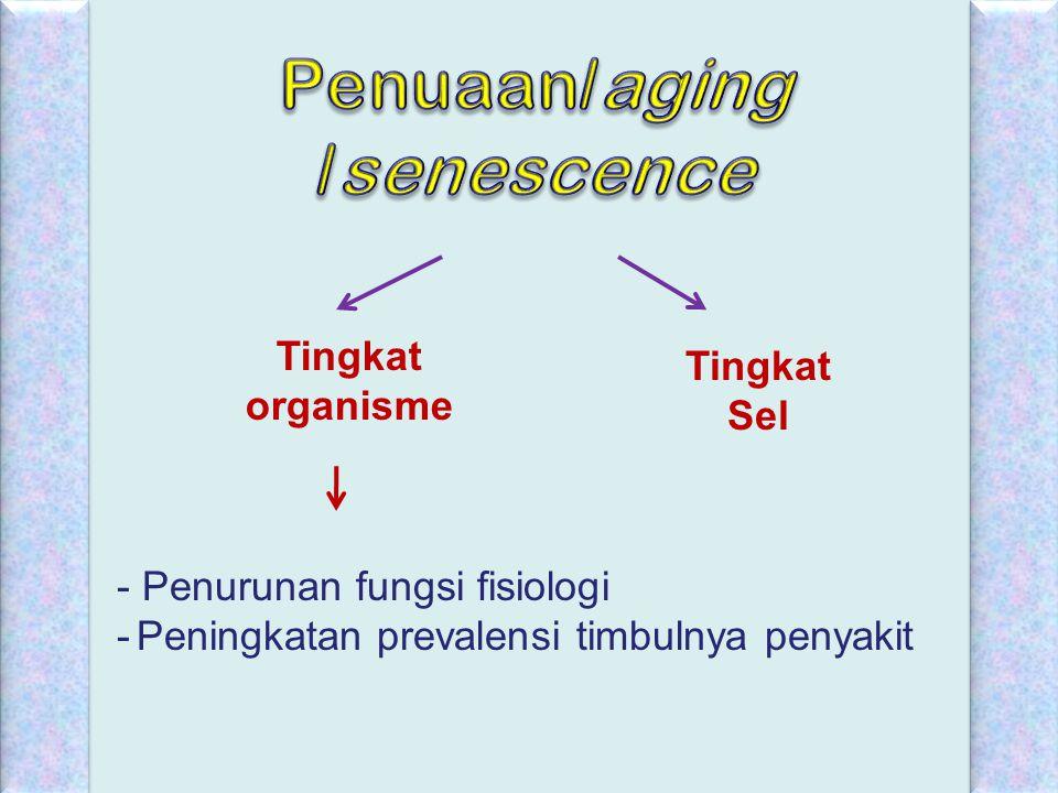 Penuaan/aging /senescence