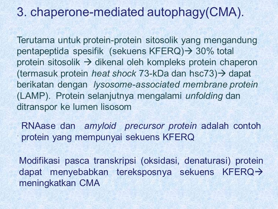 3. chaperone-mediated autophagy(CMA).