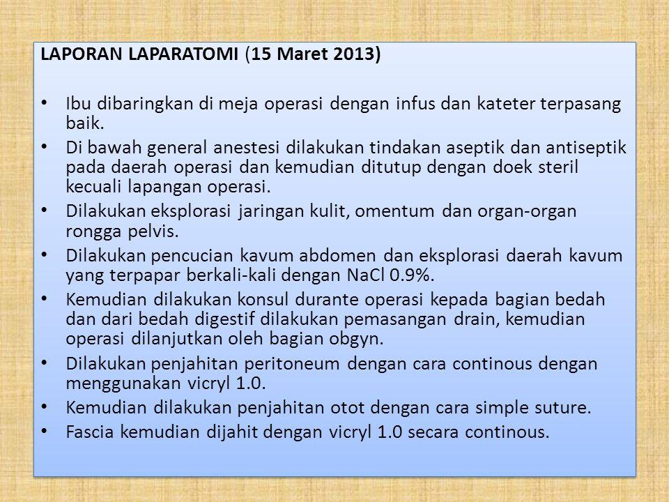 LAPORAN LAPARATOMI (15 Maret 2013)