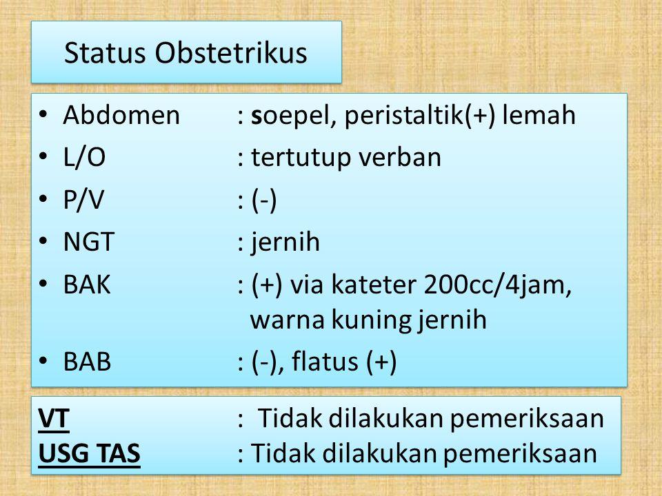 Status Obstetrikus Abdomen : soepel, peristaltik(+) lemah