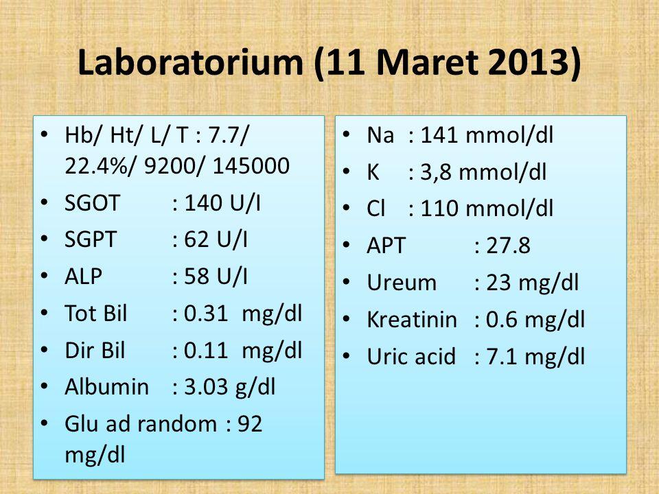 Laboratorium (11 Maret 2013) Hb/ Ht/ L/ T : 7.7/ 22.4%/ 9200/ 145000