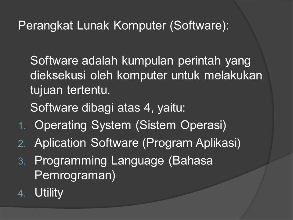 Perangkat Lunak Komputer (Software):