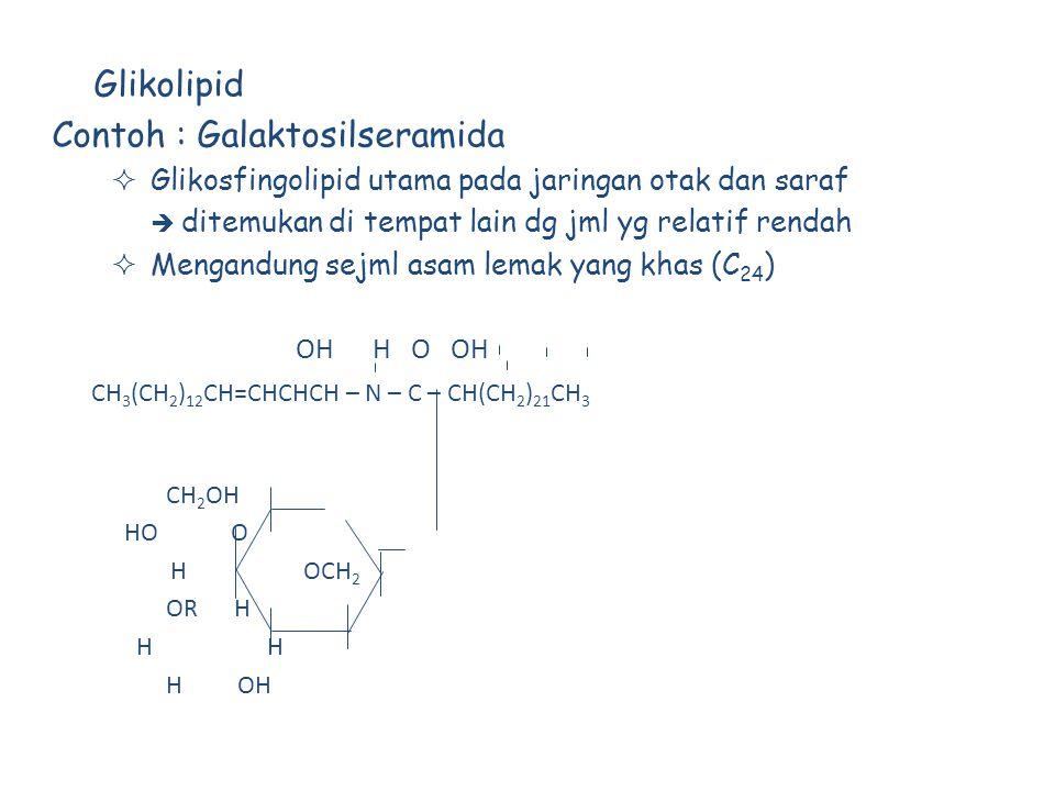 Contoh : Galaktosilseramida