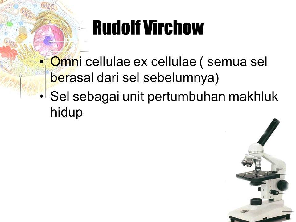 Rudolf Virchow Omni cellulae ex cellulae ( semua sel berasal dari sel sebelumnya) Sel sebagai unit pertumbuhan makhluk hidup.