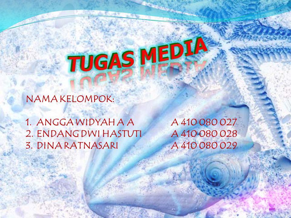 TUGAS MEDIA NAMA KELOMPOK: ANGGA WIDYAH A A A 410 080 027