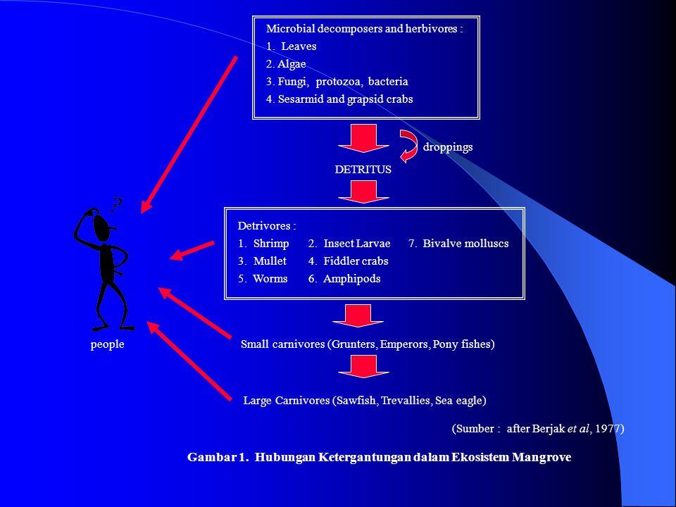 Gambar 1. Hubungan Ketergantungan dalam Ekosistem Mangrove