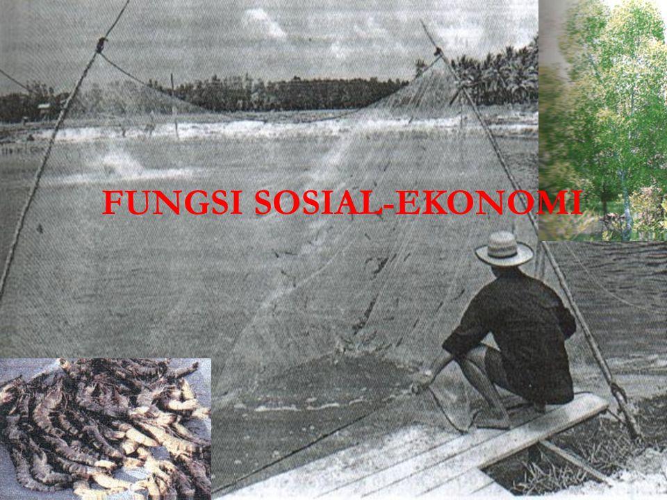 FUNGSI SOSIAL-EKONOMI