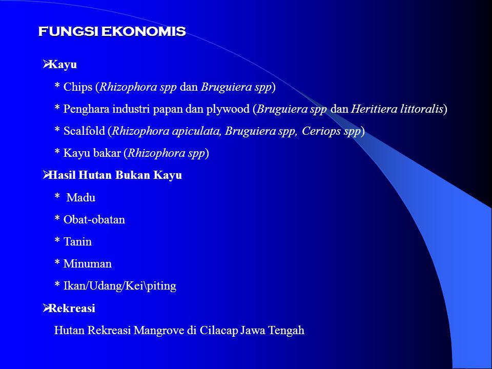 FUNGSI EKONOMIS Kayu * Chips (Rhizophora spp dan Bruguiera spp)