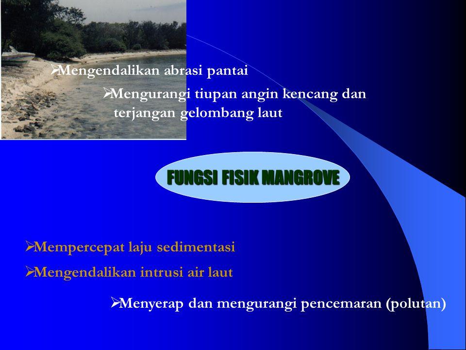 FUNGSI FISIK MANGROVE Mengendalikan abrasi pantai