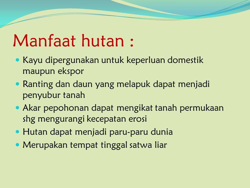 Manfaat hutan : Kayu dipergunakan untuk keperluan domestik maupun ekspor. Ranting dan daun yang melapuk dapat menjadi penyubur tanah.