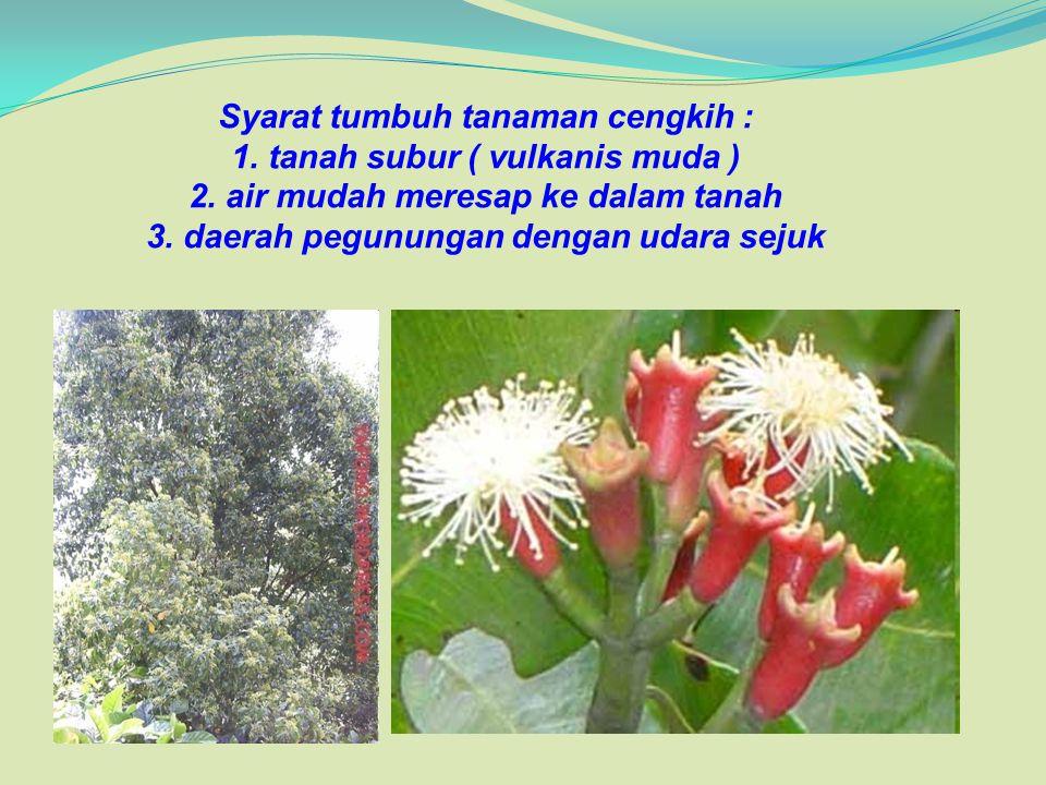 Syarat tumbuh tanaman cengkih : 1. tanah subur ( vulkanis muda ) 2