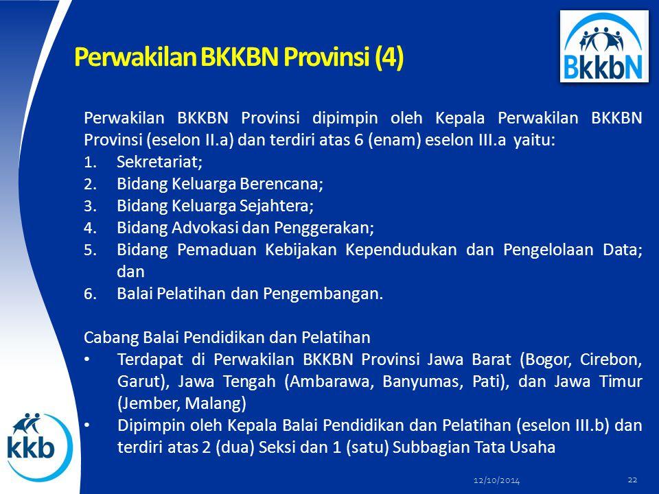 Perwakilan BKKBN Provinsi (4)