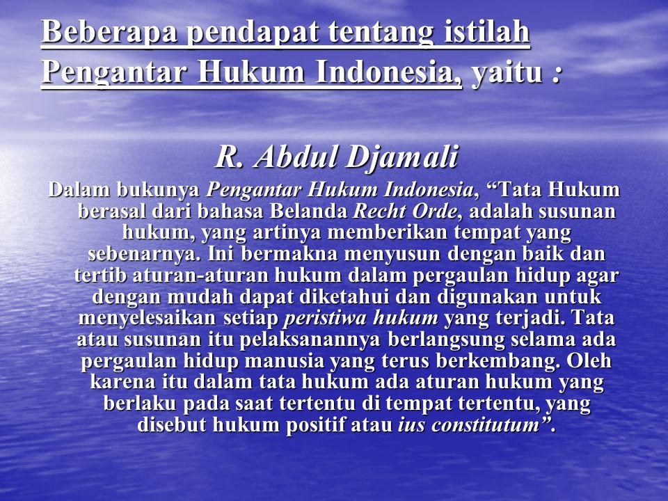 Beberapa pendapat tentang istilah Pengantar Hukum Indonesia, yaitu :