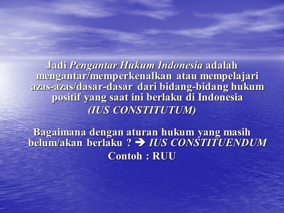 Jadi Pengantar Hukum Indonesia adalah mengantar/memperkenalkan atau mempelajari azas-azas/dasar-dasar dari bidang-bidang hukum positif yang saat ini berlaku di Indonesia