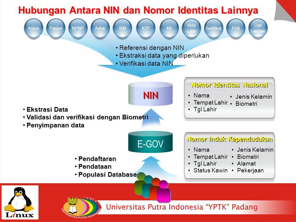Hubungan Antara NIN dan Nomor Identitas Lainnya