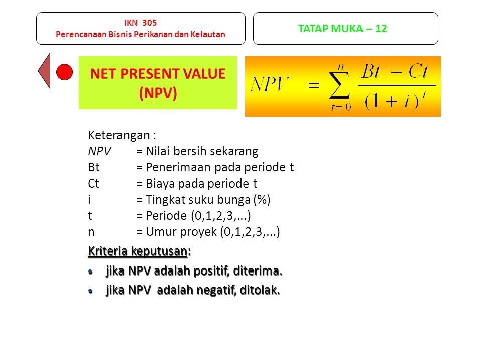 NET PRESENT VALUE (NPV)