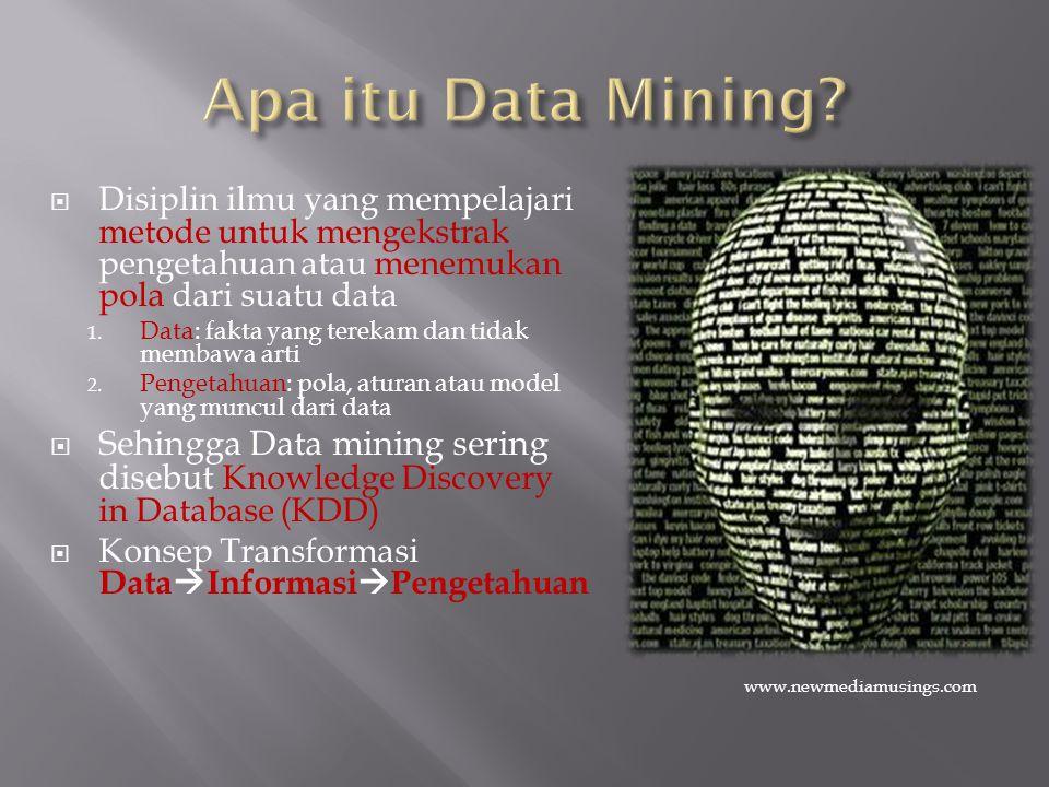 Apa itu Data Mining www.newmediamusings.com.