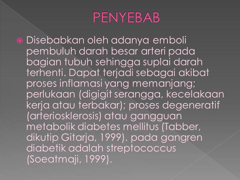 PENYEBAB