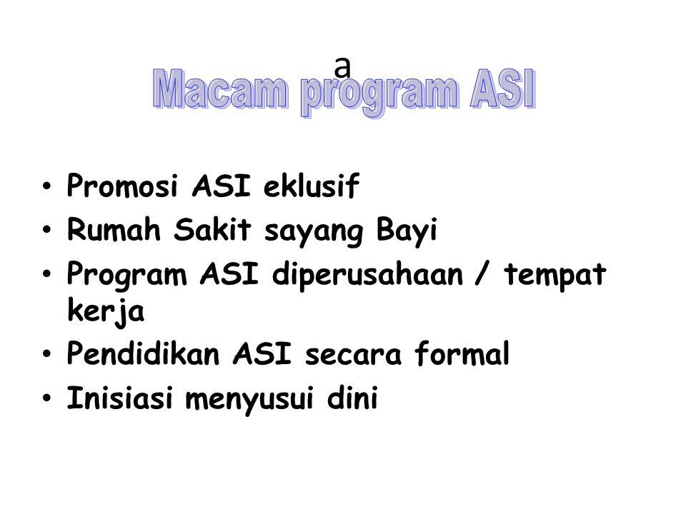 a Macam program ASI Promosi ASI eklusif Rumah Sakit sayang Bayi