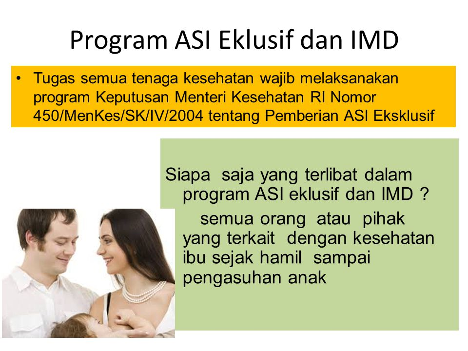 Program ASI Eklusif dan IMD