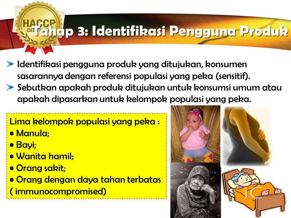 Tahap 3: Identifikasi Pengguna Produk