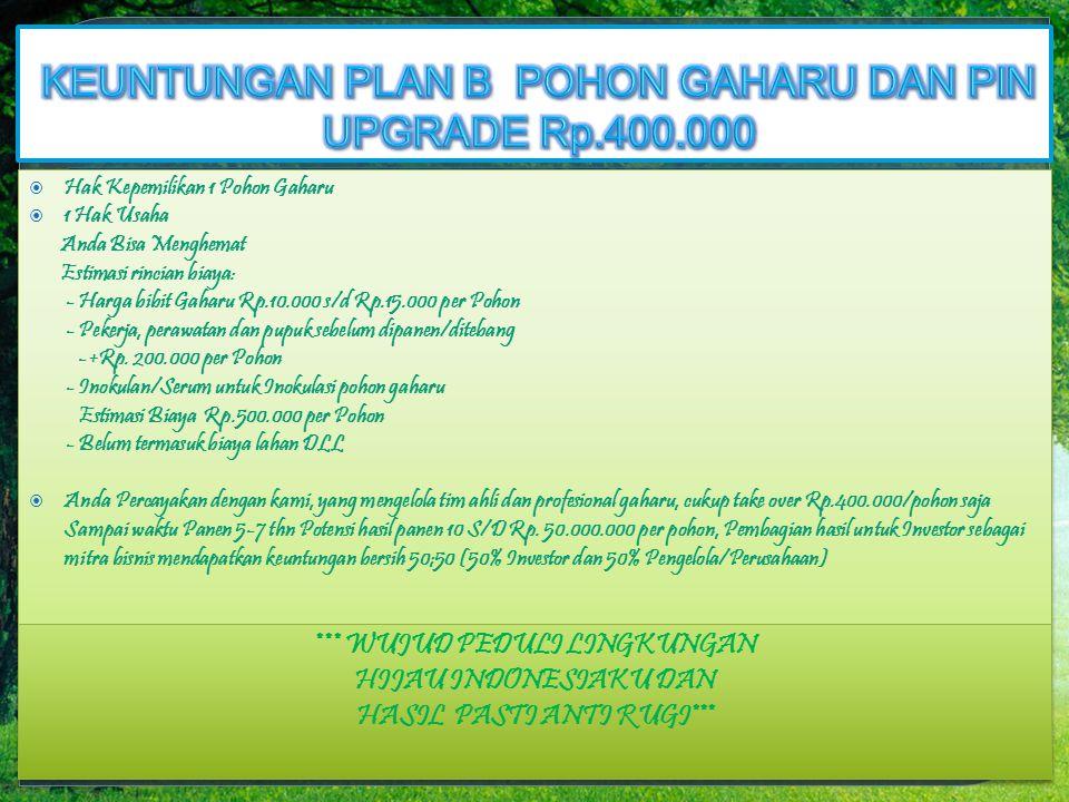 KEUNTUNGAN PLAN B POHON GAHARU DAN PIN UPGRADE Rp.400.000