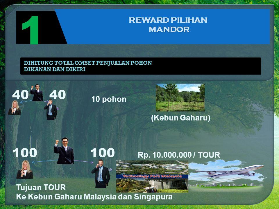 1 40 40 100 100 REWARD PILIHAN MANDOR 10 pohon (Kebun Gaharu)