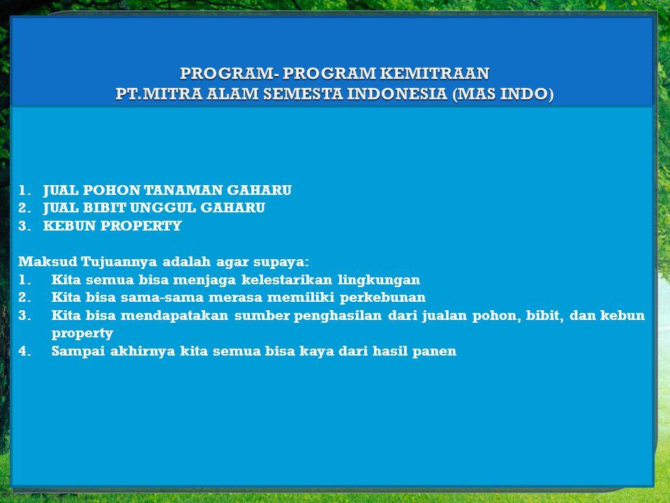 PROGRAM- PROGRAM KEMITRAAN PT.MITRA ALAM SEMESTA INDONESIA (MAS INDO)