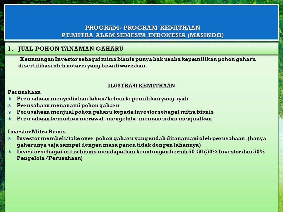 PROGRAM- PROGRAM KEMITRAAN PT.MITRA ALAM SEMESTA INDONESIA (MASINDO)