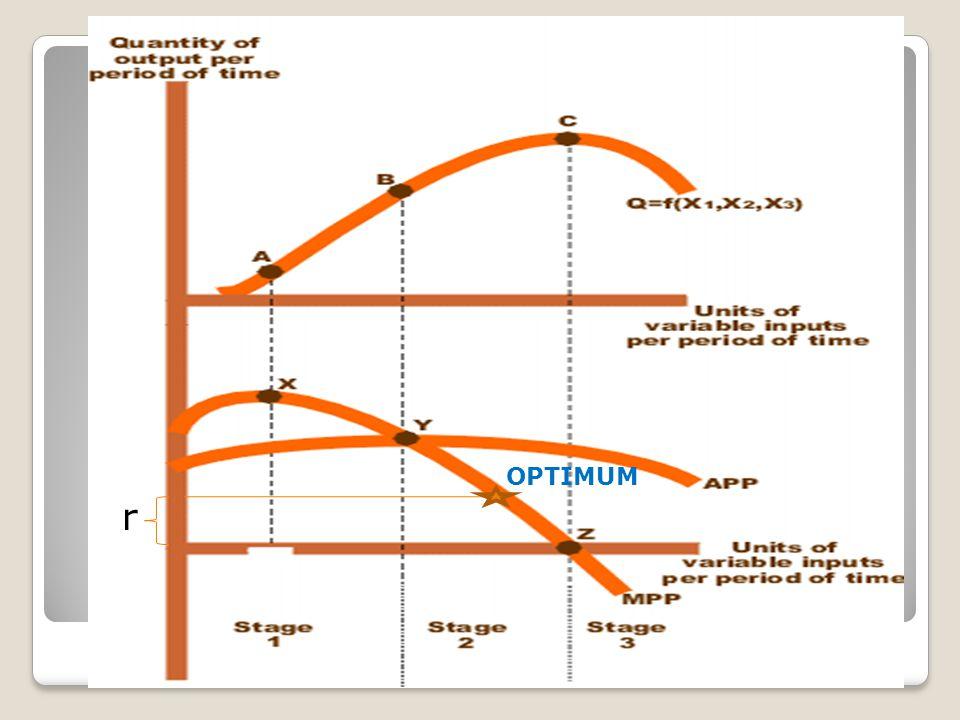 OPTIMUM r