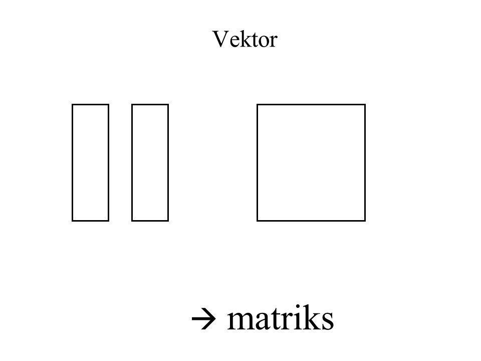 Vektor  matriks