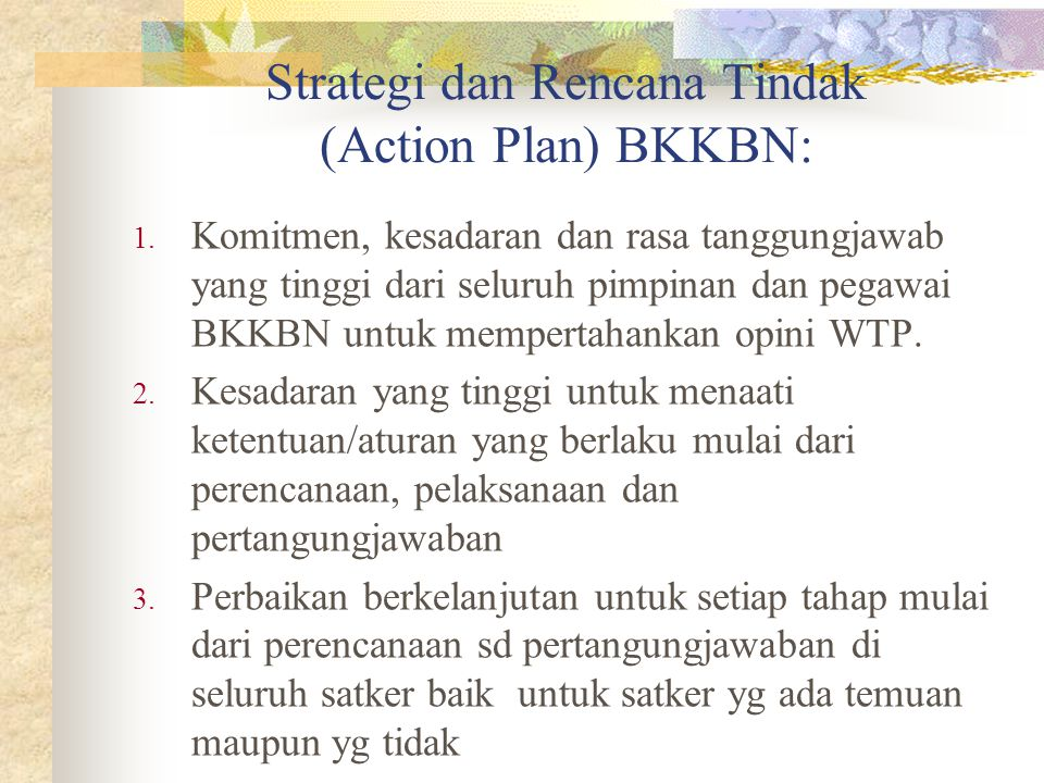 Strategi dan Rencana Tindak (Action Plan) BKKBN: