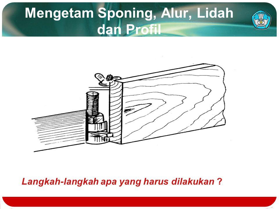 Mengetam Sponing, Alur, Lidah dan Profil