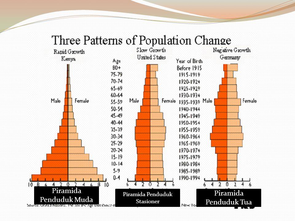 Piramida Penduduk Muda Piramida Penduduk Tua