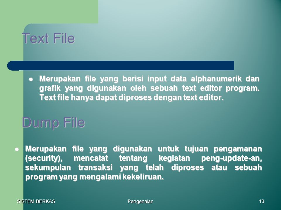 Text File