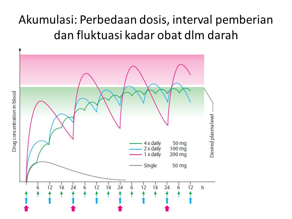 Akumulasi: Perbedaan dosis, interval pemberian dan fluktuasi kadar obat dlm darah