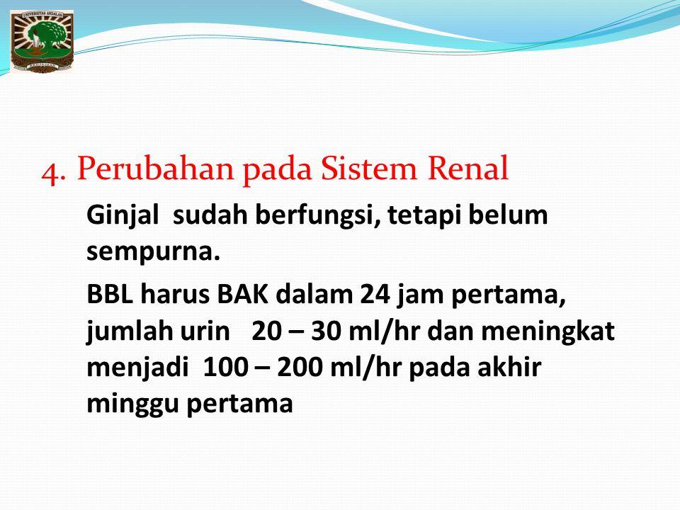 4. Perubahan pada Sistem Renal