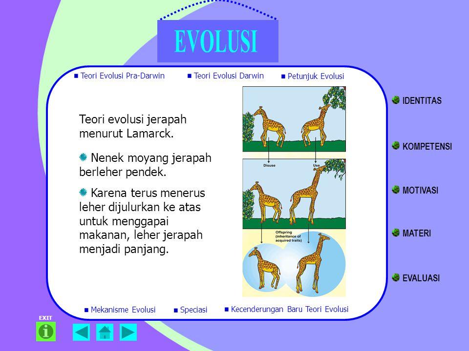 Teori evolusi jerapah menurut Lamarck.