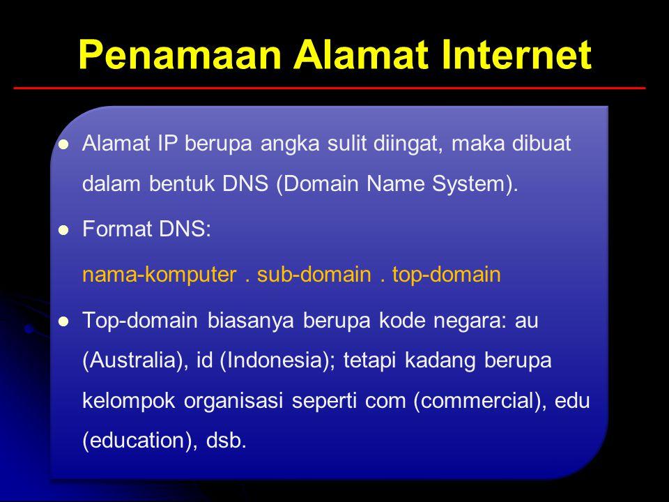 Penamaan Alamat Internet