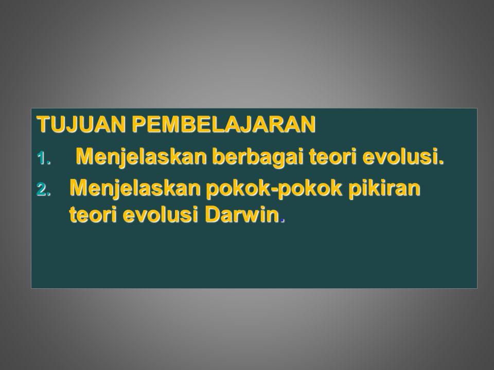 TUJUAN PEMBELAJARAN Menjelaskan berbagai teori evolusi.