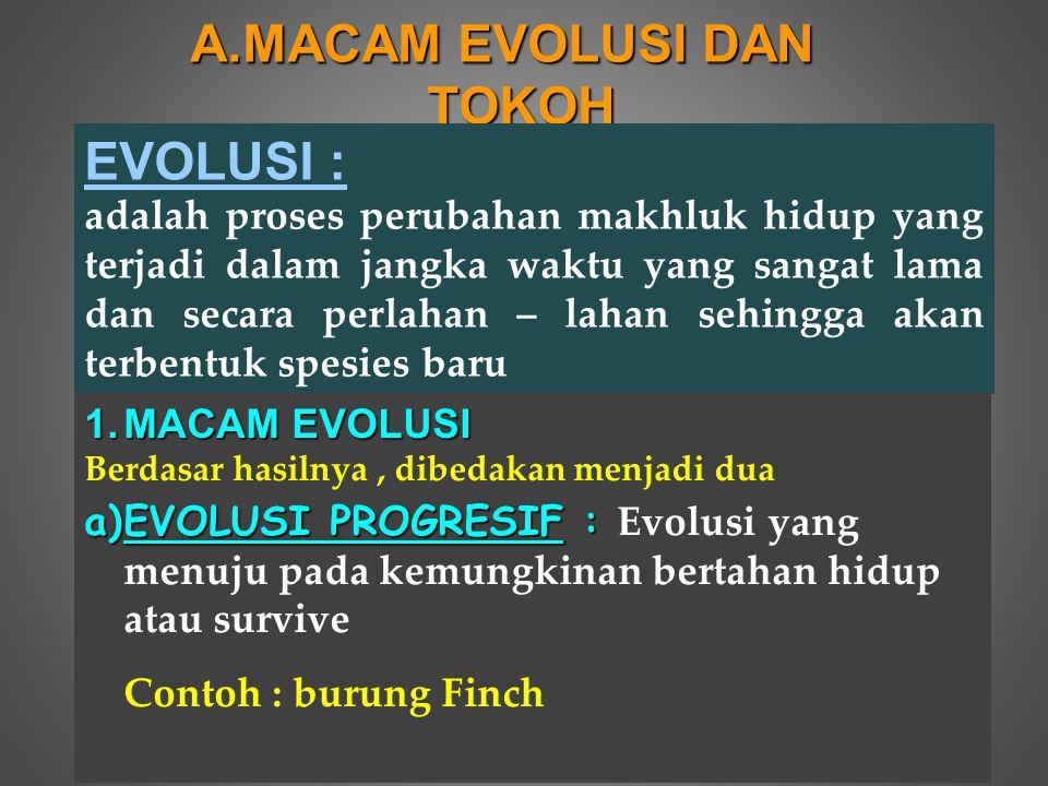 MACAM EVOLUSI DAN TOKOH