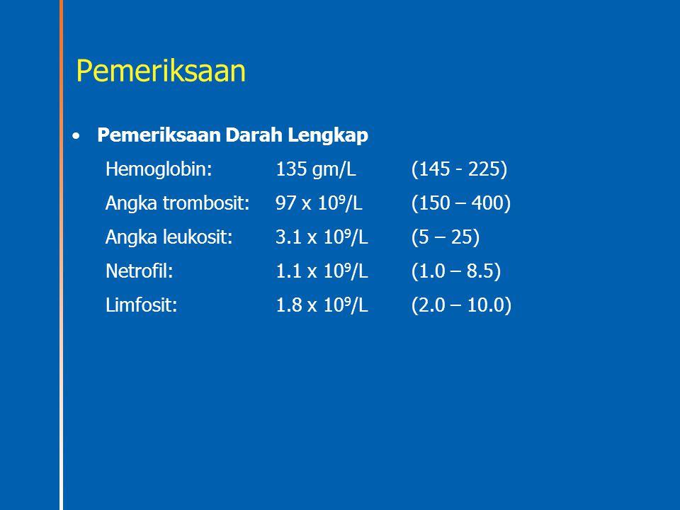 Pemeriksaan Pemeriksaan Darah Lengkap Hemoglobin: 135 gm/L (145 - 225)