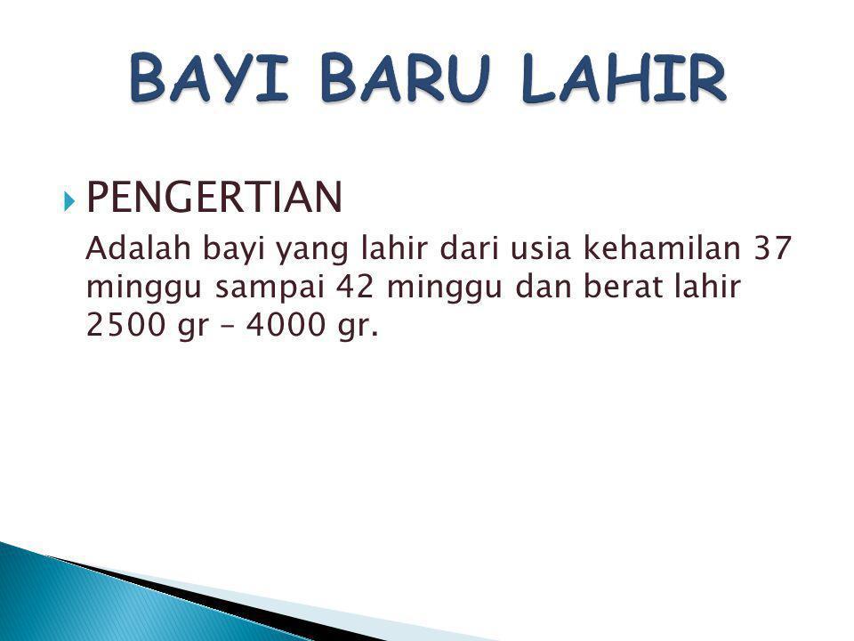 BAYI BARU LAHIR PENGERTIAN