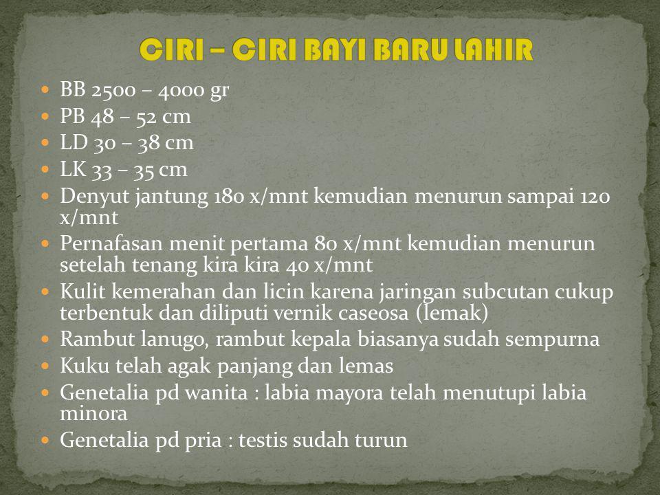 CIRI – CIRI BAYI BARU LAHIR